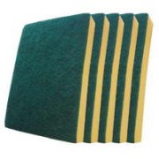 TS-G240 - 5 Pack Cleaning Sponges