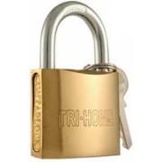 "TS-LKF6847 - 2"" Gold Plated Hardened Steel Lock"