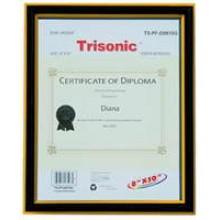 TS-PF-D0810G - 8x10 Diploma Frame - Black/Gold