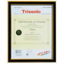 TS-PF-D0811G - 8x11 Diploma Frame - Black/Gold