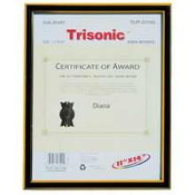 TS-PF-D1114G - 11x14 Diploma Frame - Black/Gold