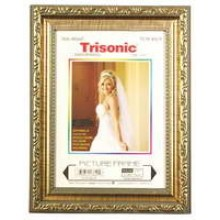 TS-PF-M570 - 5x7 Antique Brush Picture Frame