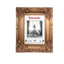 """TS-PF5725M - 5x7"""" Antique Style Picture Frame"""