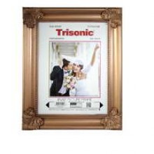 """TS-PF81016M - 8x10"""" Antique Style Picture Frame"""