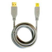 USB06-AM/5P - 6' AM-5 Pin Gold **